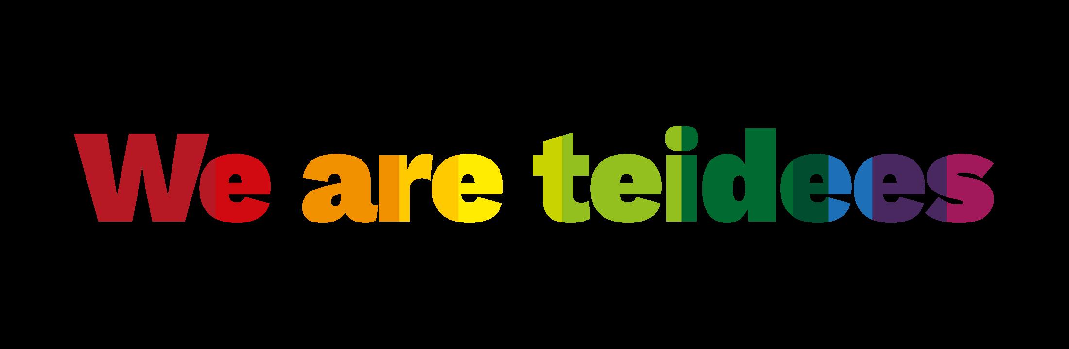 We are Teidees Audiovisuals